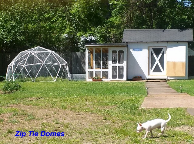 How To Purchase This 16u0027 Geodesic Chicken Coop Kit